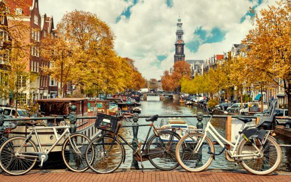 OMG We're Going Dutch – Cork